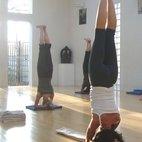 Iyengar Yoga Institute
