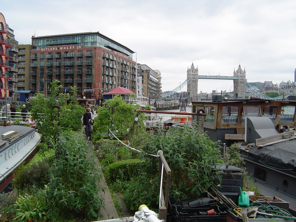 Open Garden Squares Weekend 2015 - Garden Barge Square, Tower Bridge Moorings, photo by Drew Bennellick
