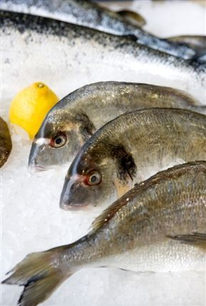 Cape Clear Fish Shop
