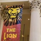 The Lion King hotels title=
