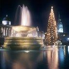 Trafalgar Square Christmas Tree & Carols hotels title=