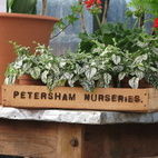 Petersham Nurseries Cafe and Teahouse hotels title=