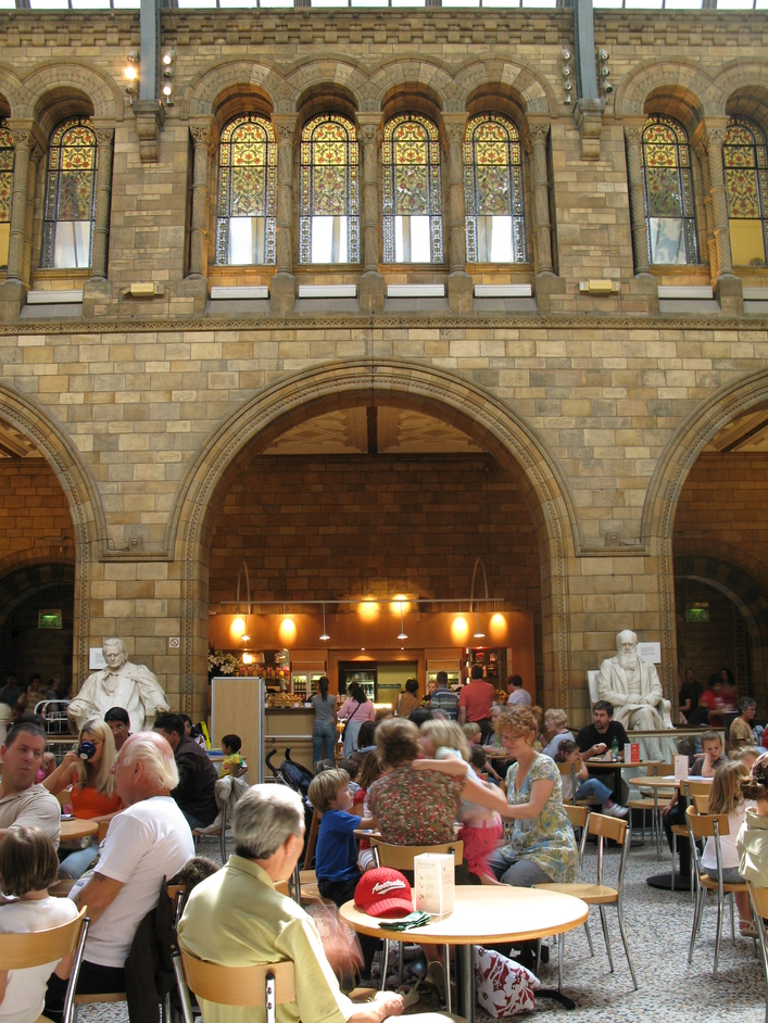 Natural History Museum - The Cafe
