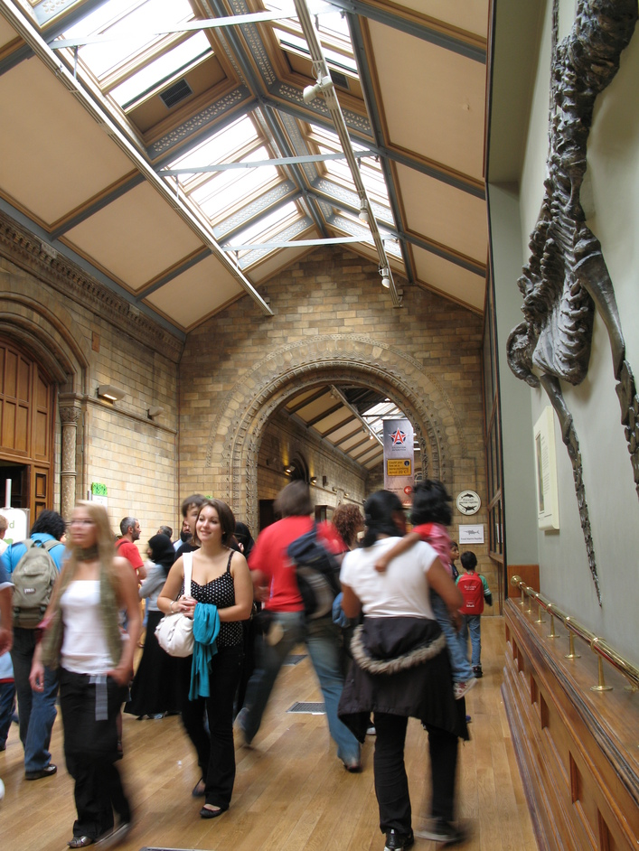 Natural History Museum - The Fossil Marine Reptiles in the Green Zone