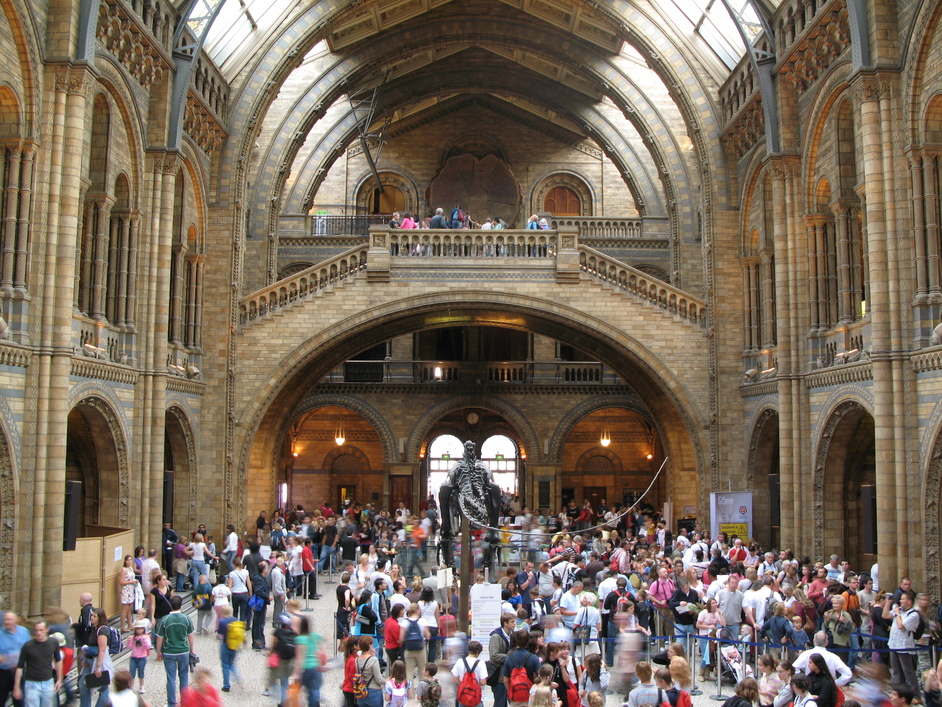 Natural History Museum - The Central Hall from the back of the building