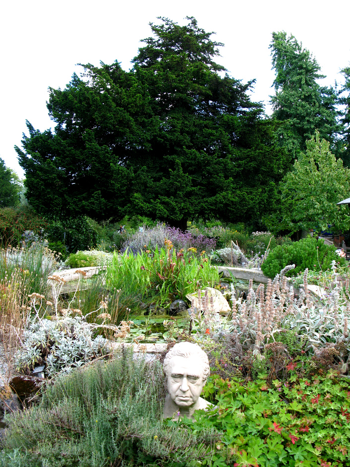 Chelsea Physic Garden - The pond rock garden which is made up of rocks from the Tower of London and icelandic lava, to name a few. The bust is that of Joseph Banks, explorer and botanist.