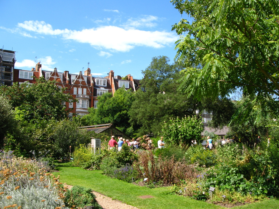 Chelsea Physic Garden - View of the houses surrounding the Garden