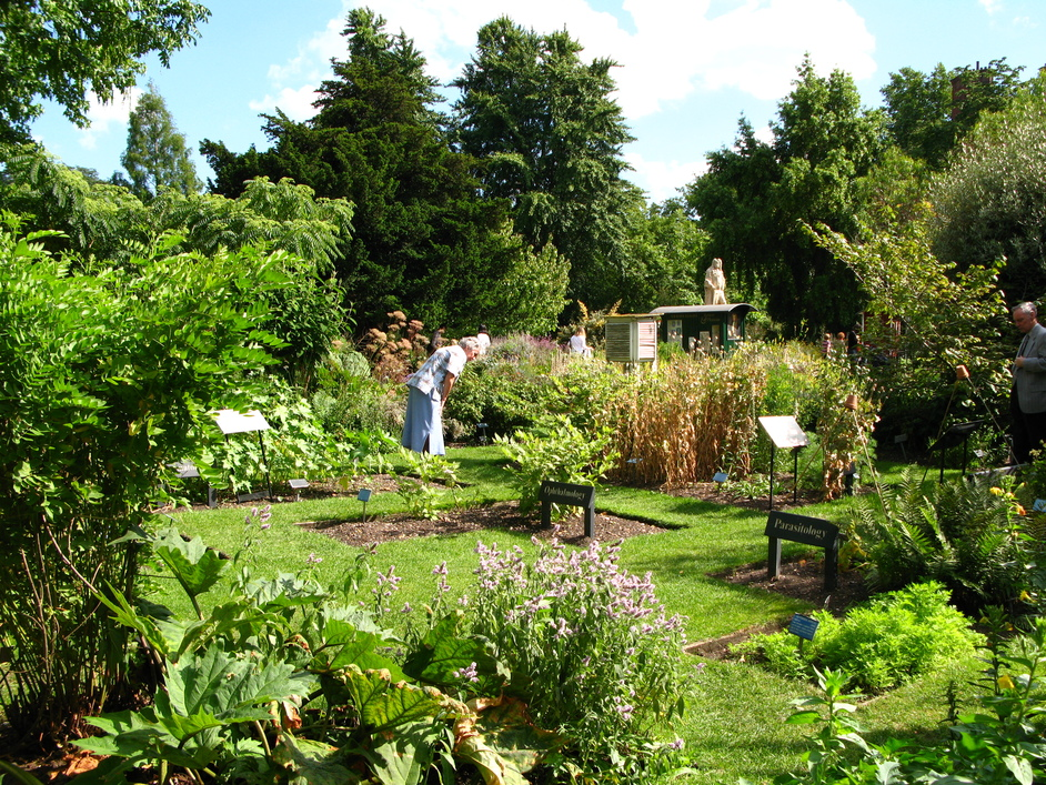 Chelsea Physic Garden - Garden of Medicine