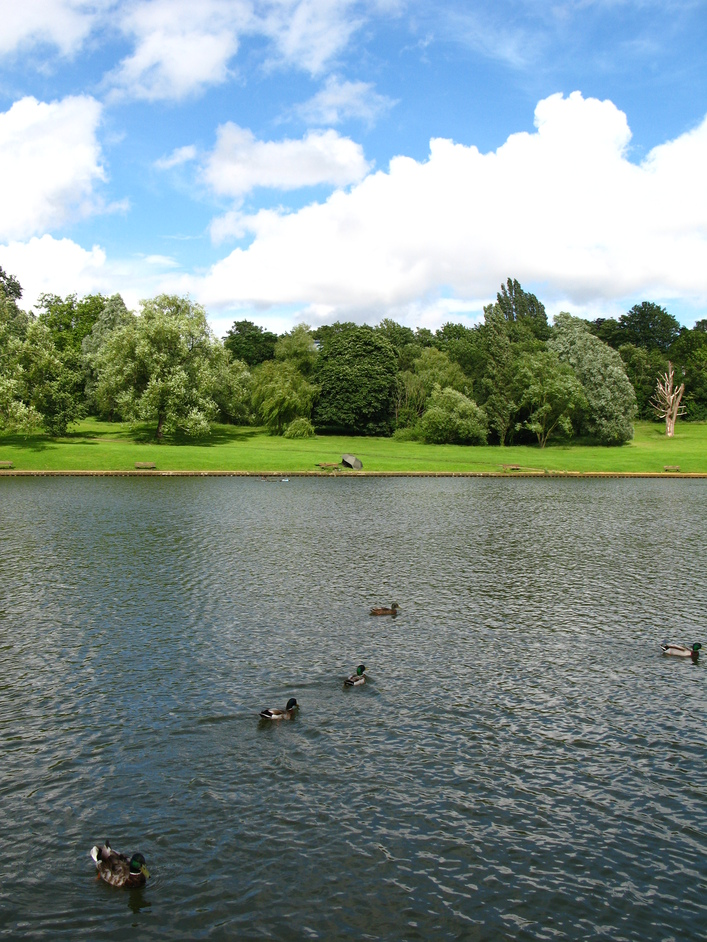 Hampstead Heath - Model boating pond