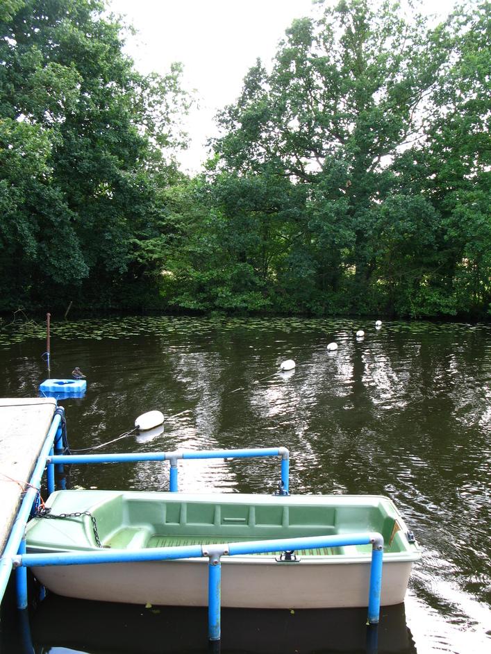 Hampstead Heath Swimming Ponds - Kenwood ladies' bathing pond
