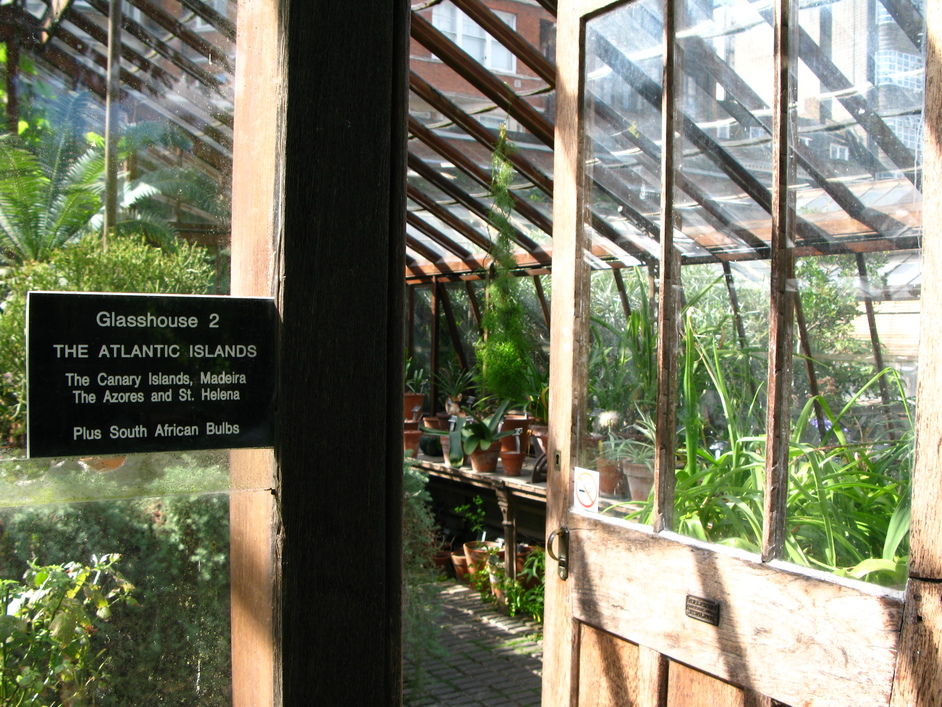 Chelsea Physic Garden - The Atlantic Islands Glasshouse