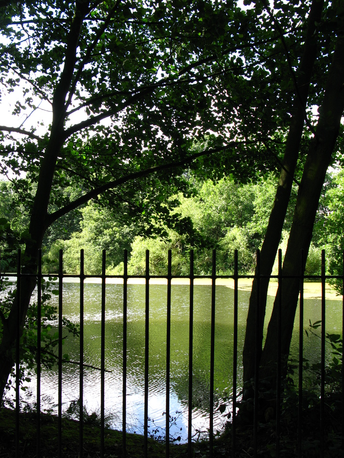 Hampstead Heath - Stock Pond
