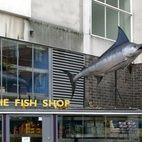 The Fish Shop