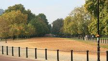 Royal Parks Foundation Half Marathon - Hyde Park