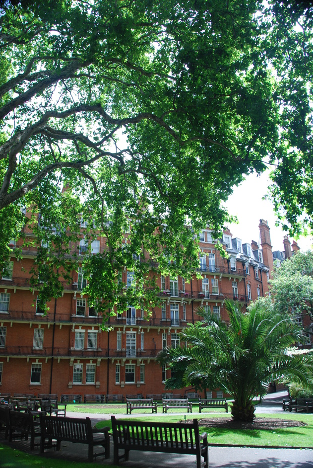 Mount Street Gardens - Mount Street Gardens