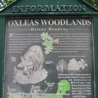 Oxleas Woods