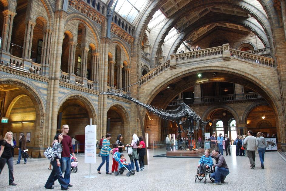 Natural History Museum - Natural History Museum Hall