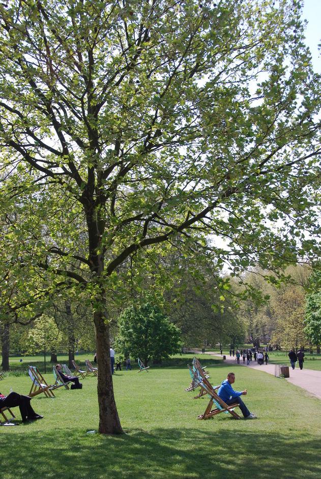 Green Park - Green Park