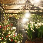 Petersham Nurseries Candlelit Christmas Shopping and Carols hotels title=