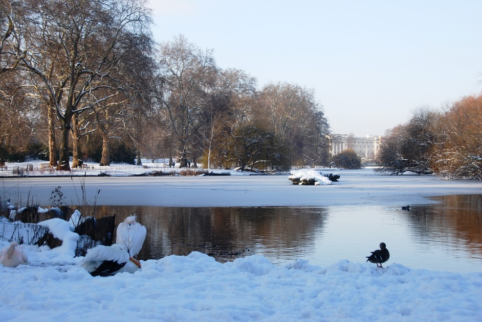 St James's Park - St James's Park, Winter