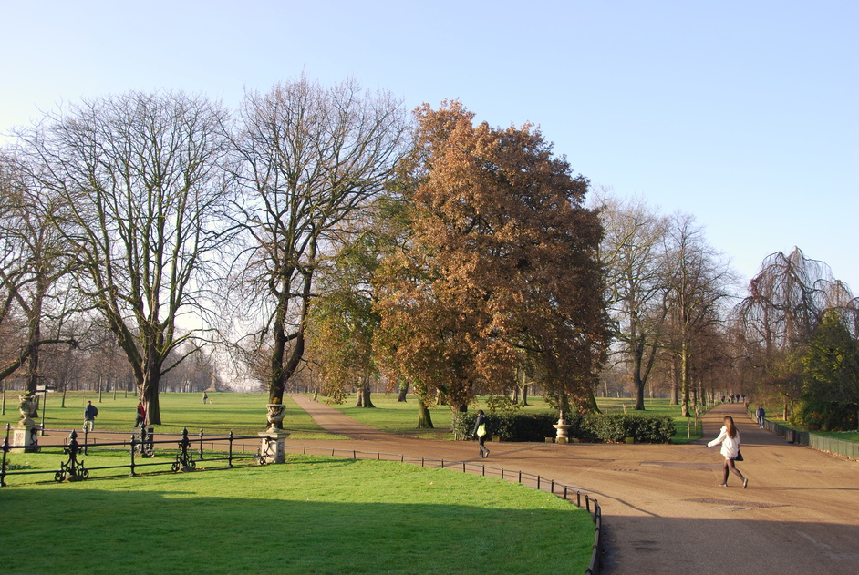 Kensington Gardens - Kensington Gardens During Winter
