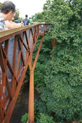 Rhizotron and Xstrata Treetop Walkway