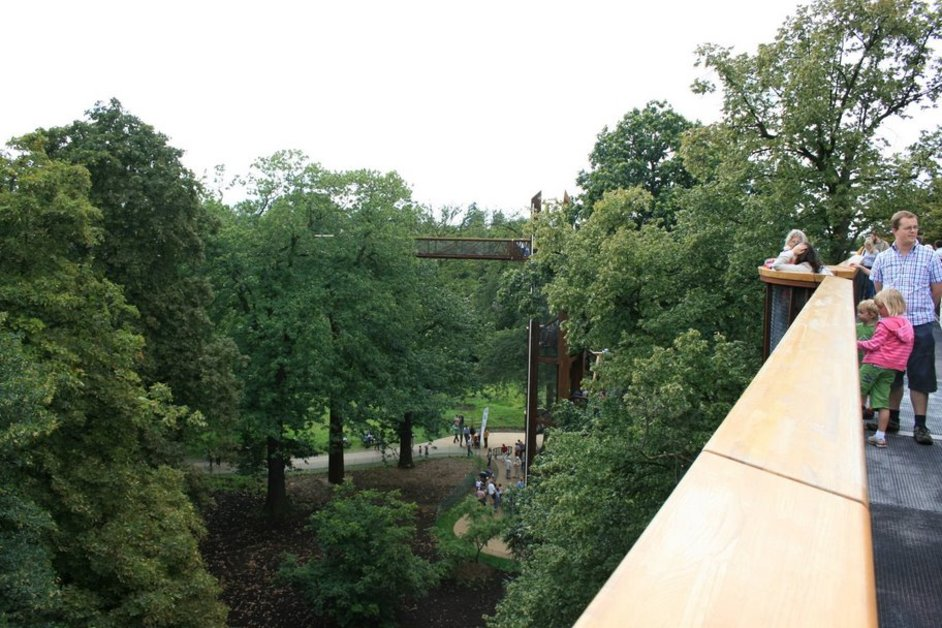 Rhizotron and Xstrata Treetop Walkway
