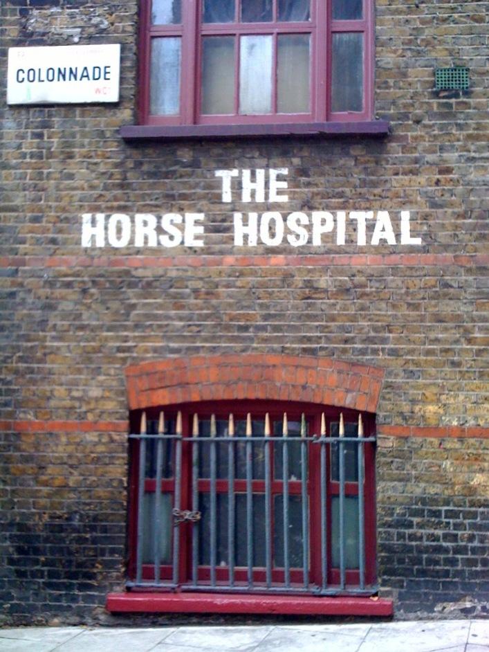The Horse Hospital
