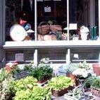 Judy Green's Garden Store