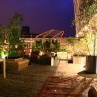Lyric Hammersmith Roof Garden