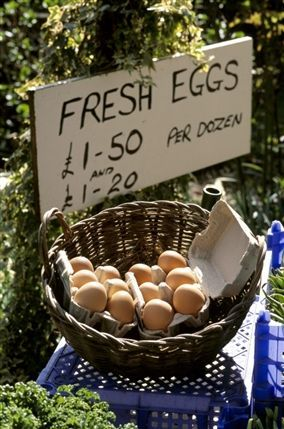 Osterley Park and House - Basket of fresh eggs at the farm shop at Osterley Park © NTPL / Ian Shaw