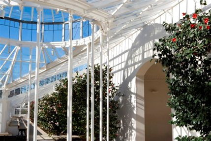 Camellia Festival - Interior view of the Conservatory at Chiswick House (c) Clive Boursnell