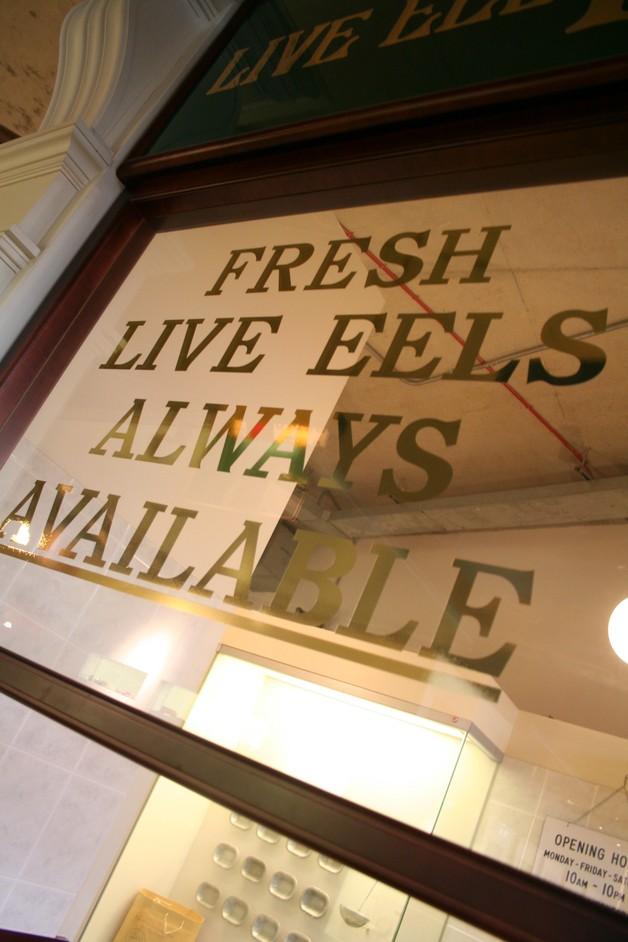 Hackney Museum - Hackney Museum, Eel, pie and mash shop