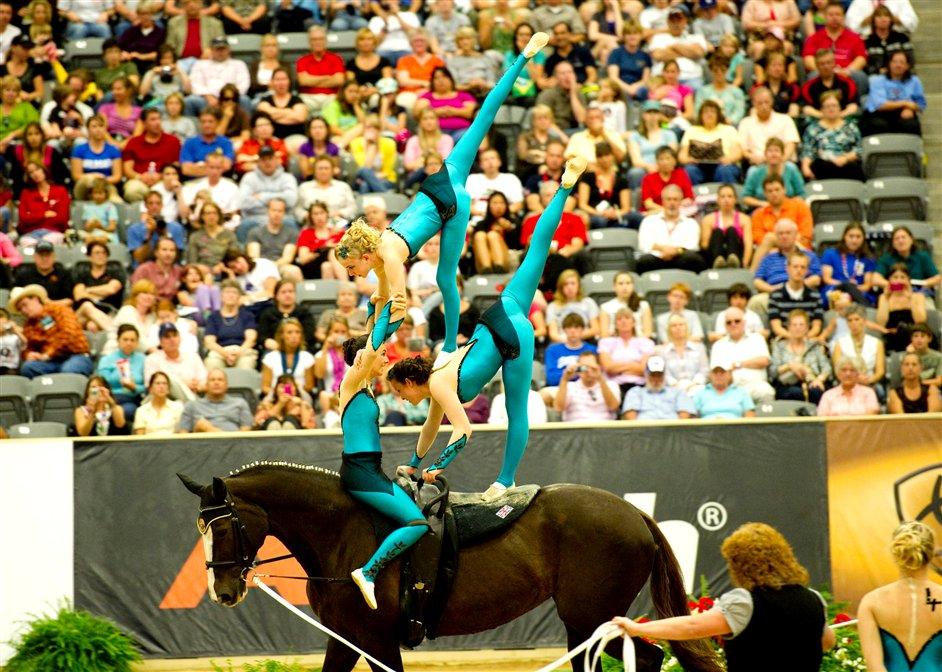 HorseWorld Live