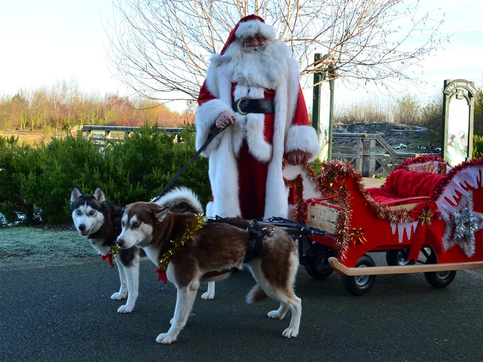 Winter Wonderland Weekend - Father Christmas and the huskies