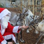Meet Santa at ZSL London Zoo