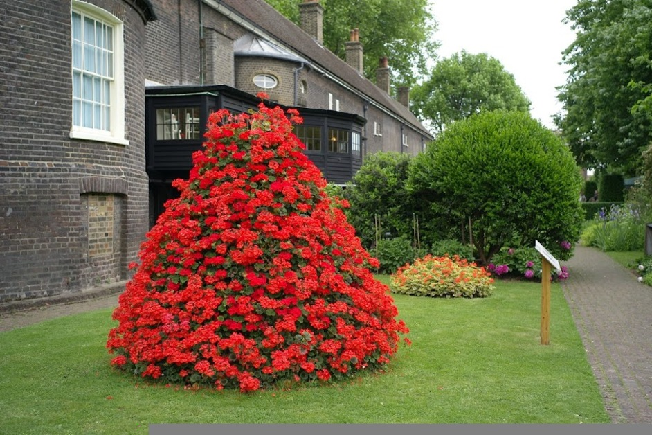 Open Garden Squares Weekend 2015 - Geffrye Museum, photo by Gavin Gardiner