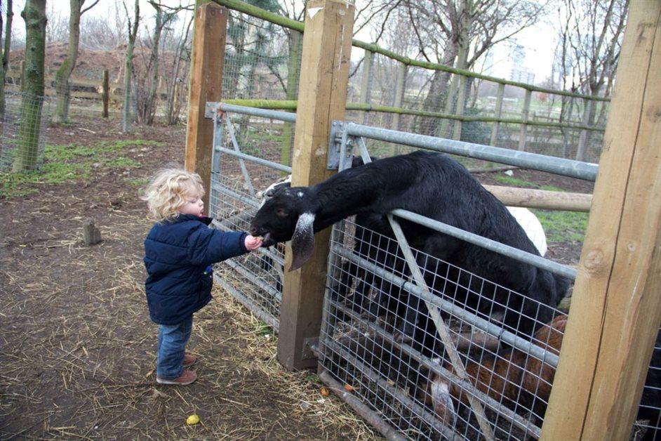Mudchute Park & Farm