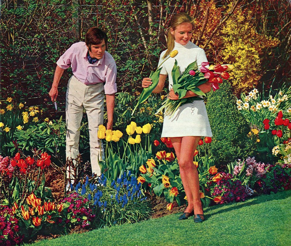 Floriculture: Flowers, Love and Money - Hortico Magazine c1967