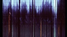 Participatory Photography Commission - A slit scan image compiled from footage from Battersea Park