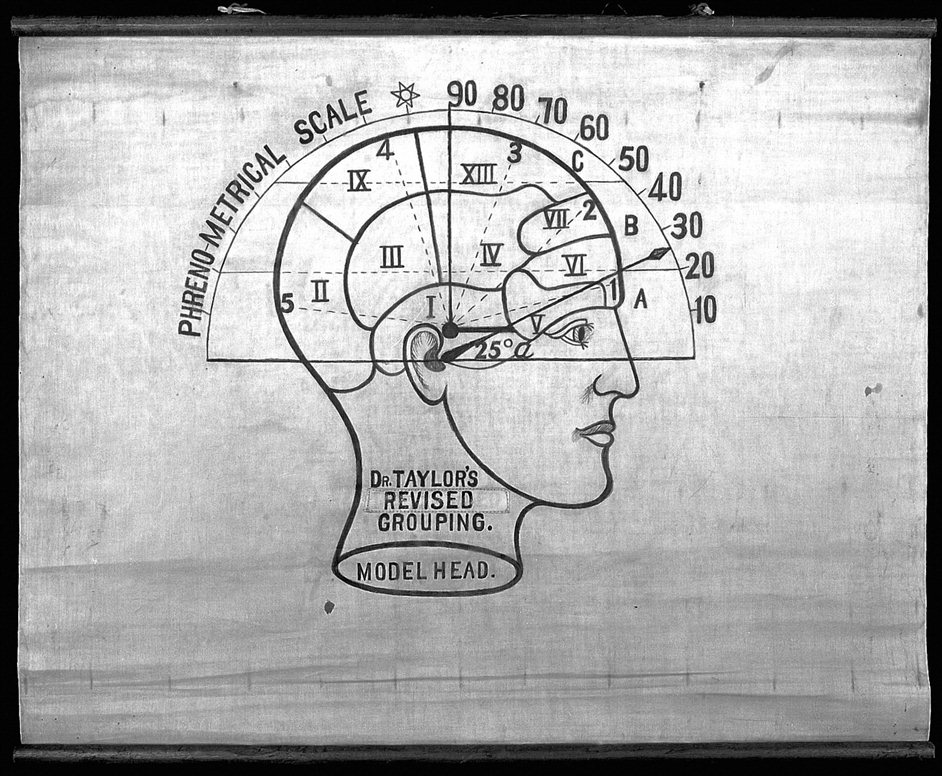 Wonder: Art and Science on the Brain - Phrenology - Credit Wellcome Library, London
