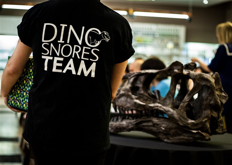 Dino Snores - Sleepover at the Museum - © Kieran Kerrigan