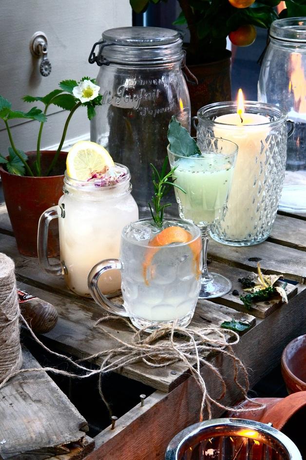 The Botanical Gin Garden