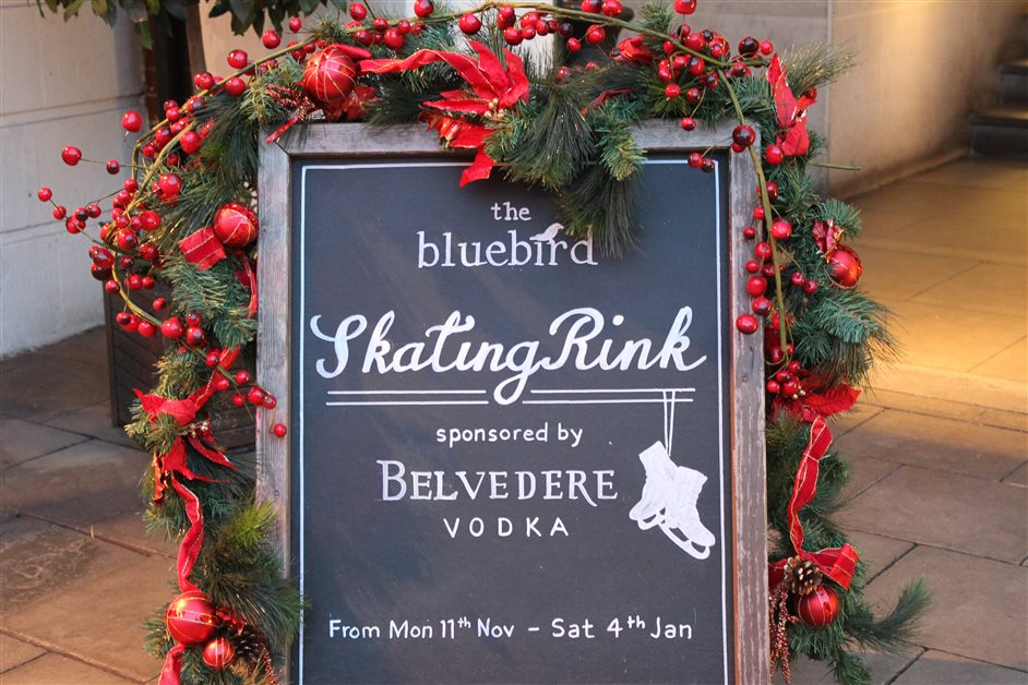 The Bluebird Skating Rink