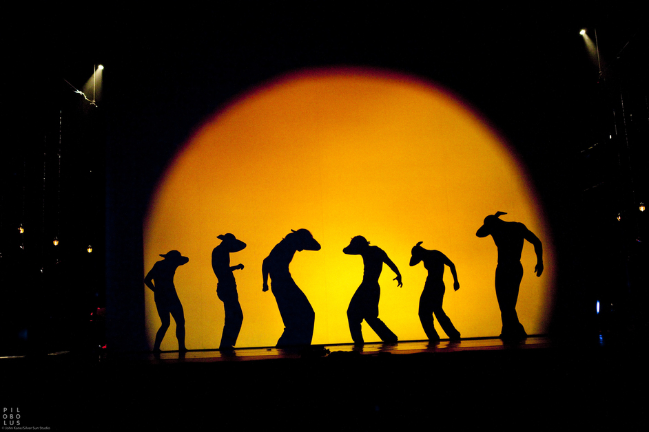 Pilobolus Dance Theatre: Shadowland - Pilobolus Dance Theatre, Shadowland, photo by John Kane