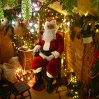 W6 Christmas Grotto
