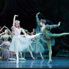 The Royal Ballet: The Dream/New Marriott/The Concert