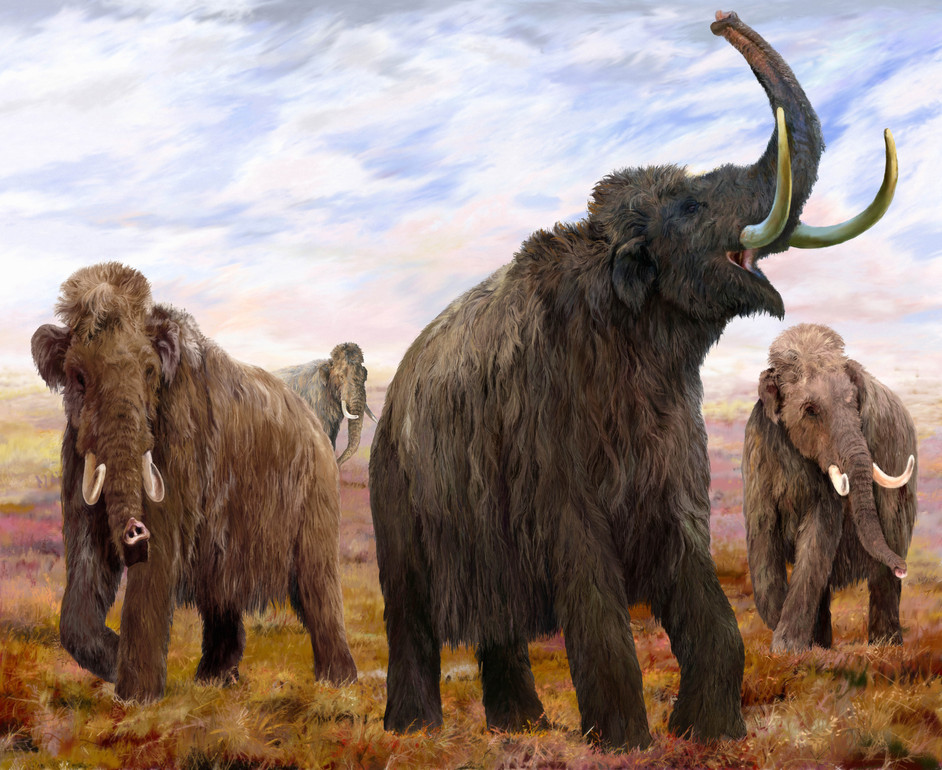 Mammoths: Ice Age Giants - Woolly Mammoths Mural, illustration by Velizar Simeonovski © The Field Museum