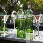 Tanqueray No. TEN Citrus Garden