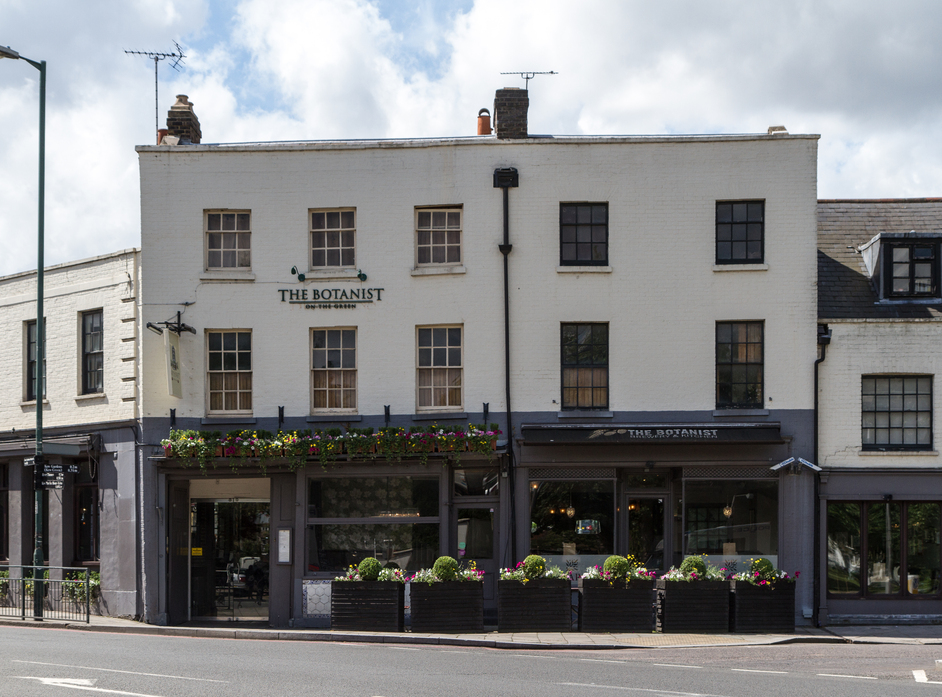 The Botanist on Kew Green
